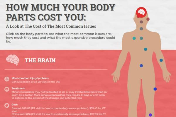 How Much Your Body Parts Cost - Trade School Programs in Chicago